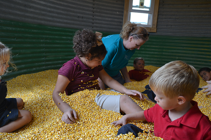 Corn Dodgers Field Trip - October 2015